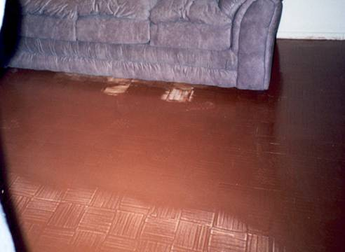 Coop City Wood Floors Refinished Blinds Bronx Ny Home Residential